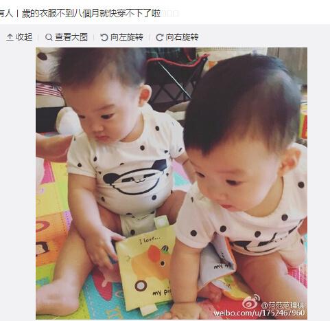 """范玮琪晒双胞胎儿子萌照爱子""""翻看""""童书(图)"""