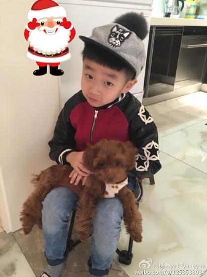 """[明星爆料]杨云晒爱子萌照 杨阳洋""""戴""""圣诞帽抱小狗(图)"""