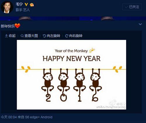 """[明星爆料]毛宁涉毒后首度更新微博 祝众人\""""新年快乐\""""(图)"""
