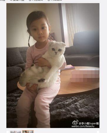 李小璐女儿梳可爱小辫怀抱小猫造型呆萌(图)