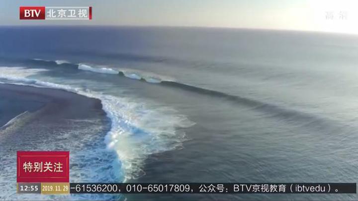 众明星录制视频呼吁保护海洋
