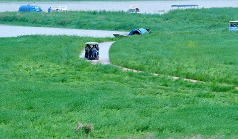 """近日,在江西上饶市鄱阳县白沙洲乡,游客正乘坐旅游观光车往返于鄱阳湖无念岛和码头接壤的最美""""水上公路""""上。"""